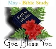 Bibleorchid