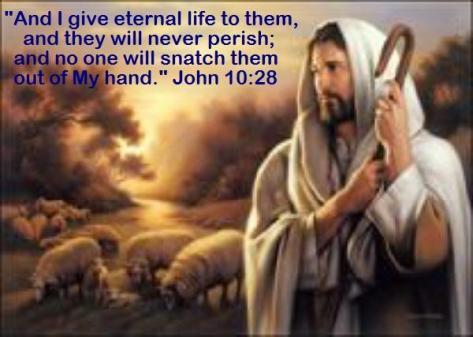 Good Shepherd - John 10-28