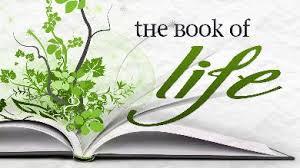 Vine Bk of Life