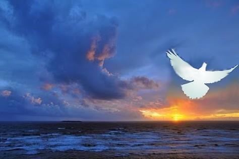 Psalm 139 Dove