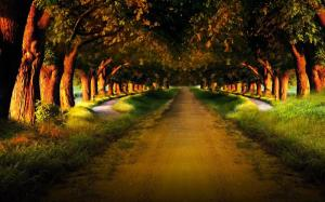 3d-abstract_widewallpaper_evening-walk-anyone_50427