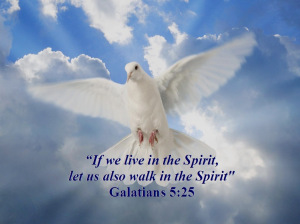 GAL. 5:25 If we live in the Spirit, let us also walk in the Spirit.